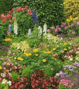 Romance is Like Gardening
