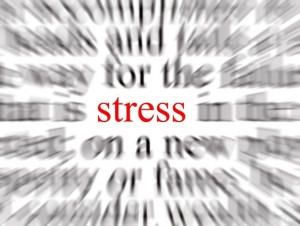 Stress is Just a Fact of Life—How to Live Life Without It